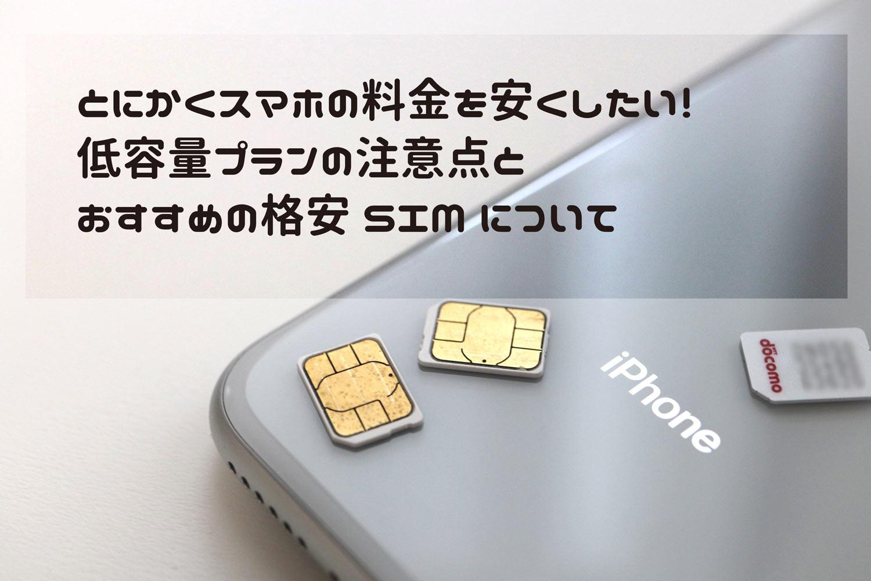 格安SIMの小容量プランの注意点とおすすめ