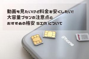 格安SIMの大容量プランの注意点とおすすめ