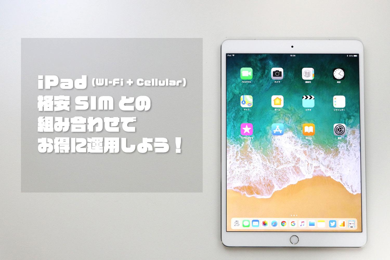 iPadと格安SIM