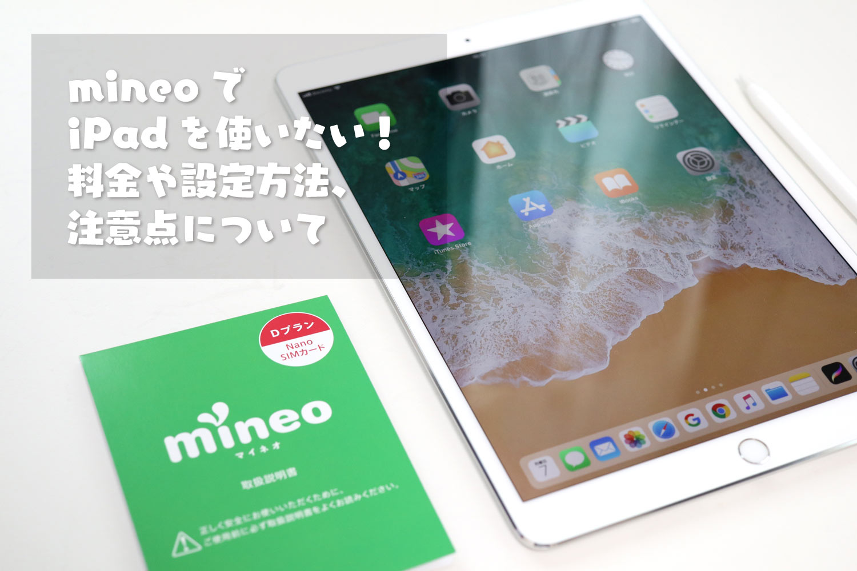 mineoでiPadを使う